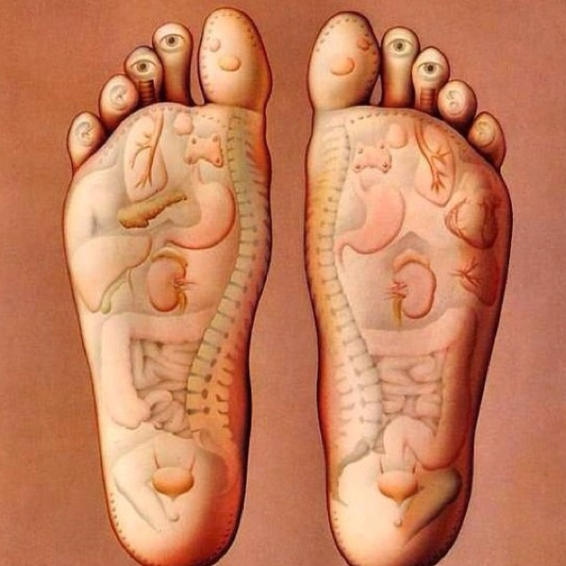 no wonder why it feels good when someone rubs your feet!