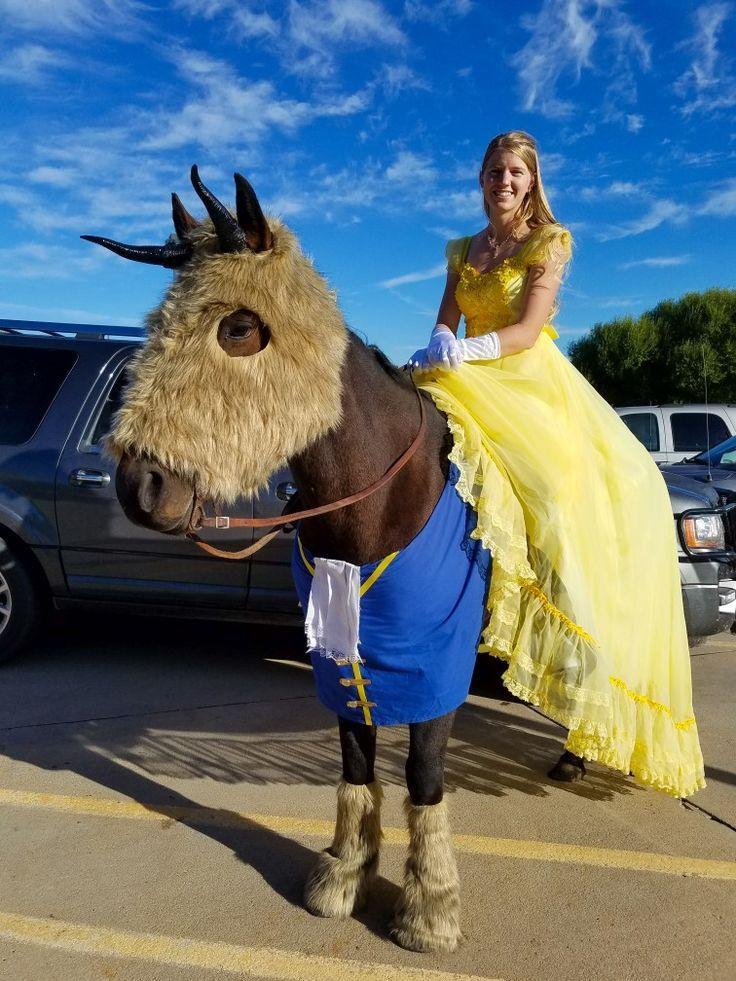 Beauty And The Beast Beauty And The Beast Horse Barnum Beast Beauty Costume Horse Rider Treat Trunk Pferde Kostume Kostume Fur Pferde Turnierpferde