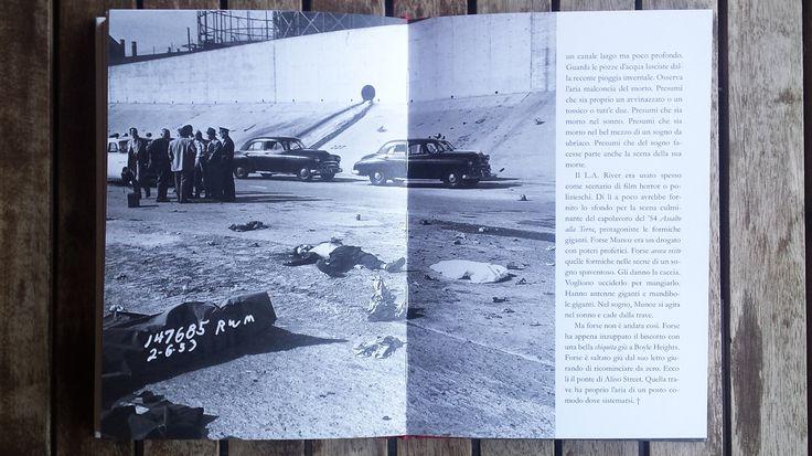 Ottantacinque foto della polizia di L.A. del 1953 raccontate da uno dei più grandi scrittori americani viventi