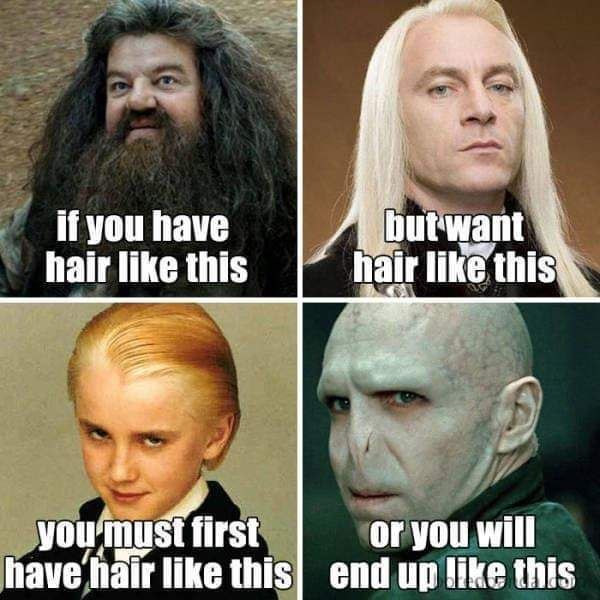Hair Ideas Harry Potter Hair Meme If You Have Hair Like Hagrid But You Want Hair Like Lucious Malfoy You Must Hairstylist Humor Hairstylist Memes Hair Meme