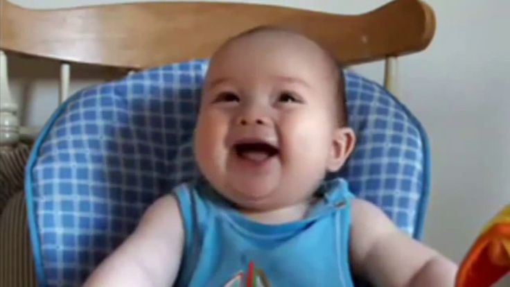 Best Funny Babies and Animals