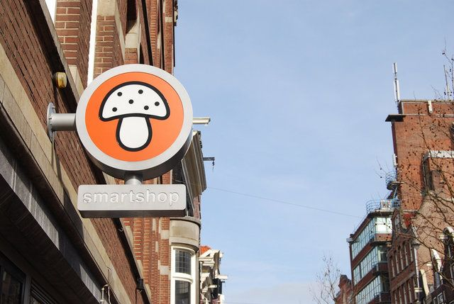 How to be a savvy tourist in Amsterdam - Amsterdam tourist tips