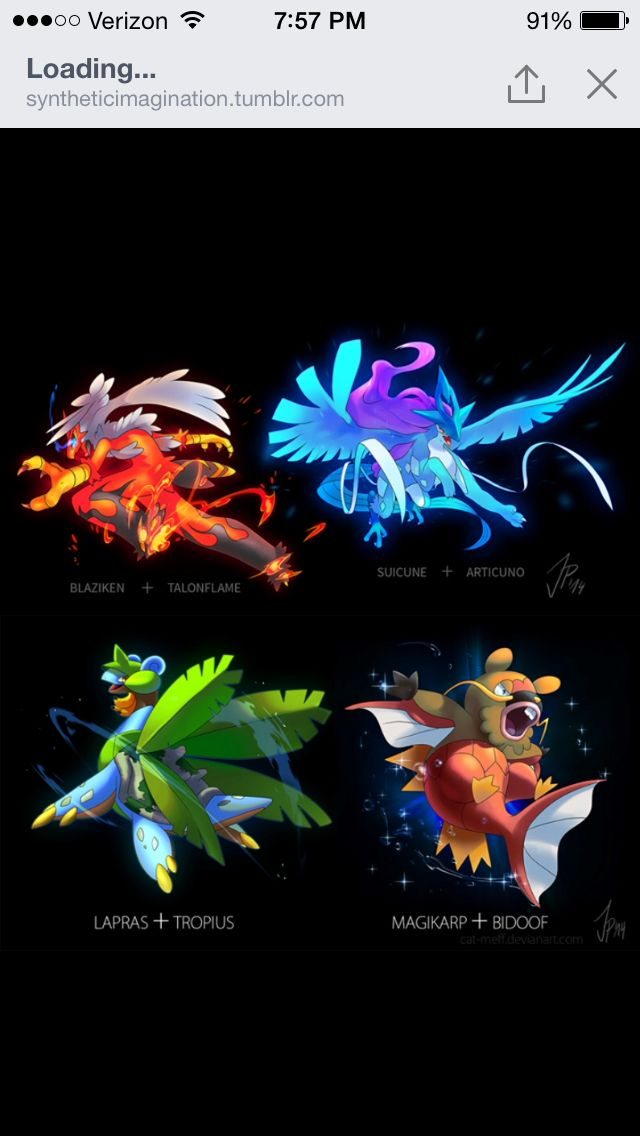 Pokemon Mashups