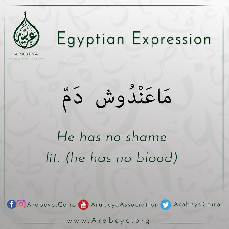 Learn Egyptian expressions