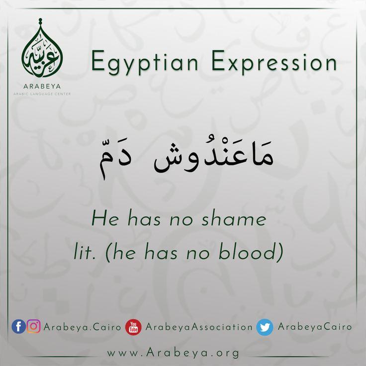 Best books for learning egyptian arabic? : learn_arabic