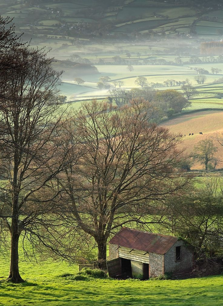 Marshwood Vale, West Dorset, England by Tony Gill