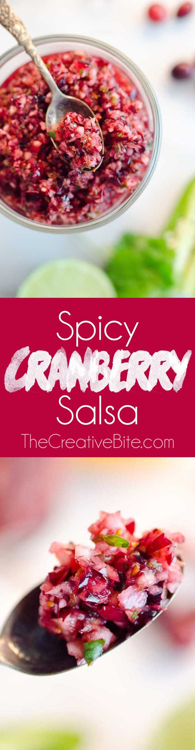 Spicy Cranberry Salsa is a fresh blend of cranberries, jalapeños, cilantro, honey and citrus for a healthy condiment perfect with turkey or spread on cream cheese and served with crackers for an easy appetizer!