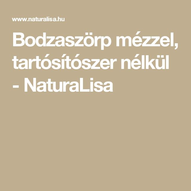 Bodzaszörp mézzel, tartósítószer nélkül - NaturaLisa