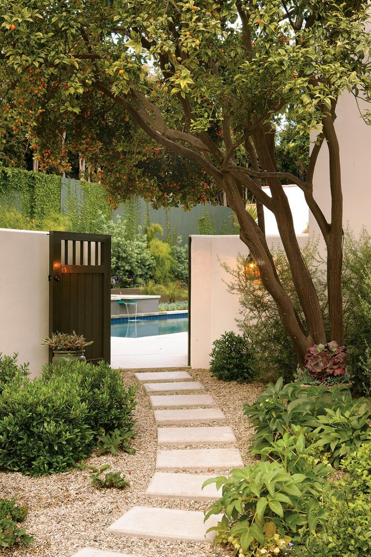 Love the light stucco wall with dark, contemporary gate, multi-trunk tree, and contemporary pool and waterfall