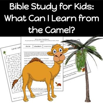 Bible Study: What Can I Learn from the Camel #biblestudy