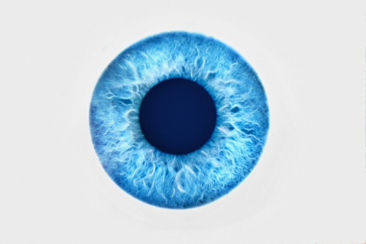 The Cornea is the only tissue in the human body that doesn't require blood to function. #didyouknow #eyefacts