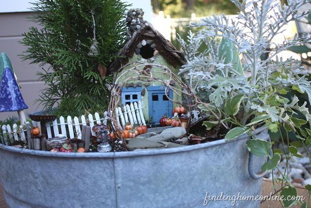 Fall fairy garden -- love the teeny-tiny pumpkins!