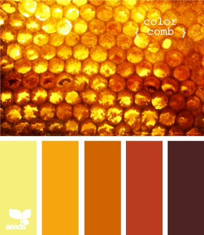 Love this color palette. We are heavily favoring oranges at the moment. :)