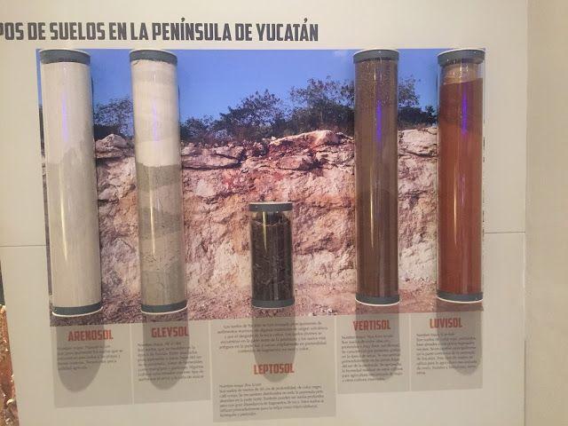CONOCIMIETO DE LA ENTIDAD: CONTEXTOS E INDICADORES EDUCATIVOS.: GRAN MUSEO DEL…