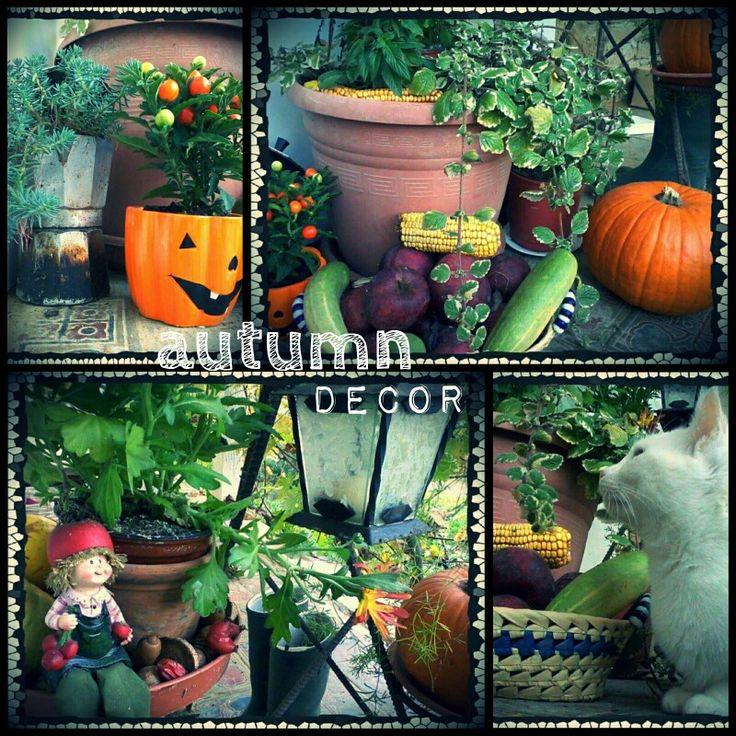 Entrance autumn decoration. ^^