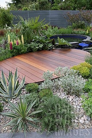 730 Best Images About Backyard Water Gardens On Pinterest