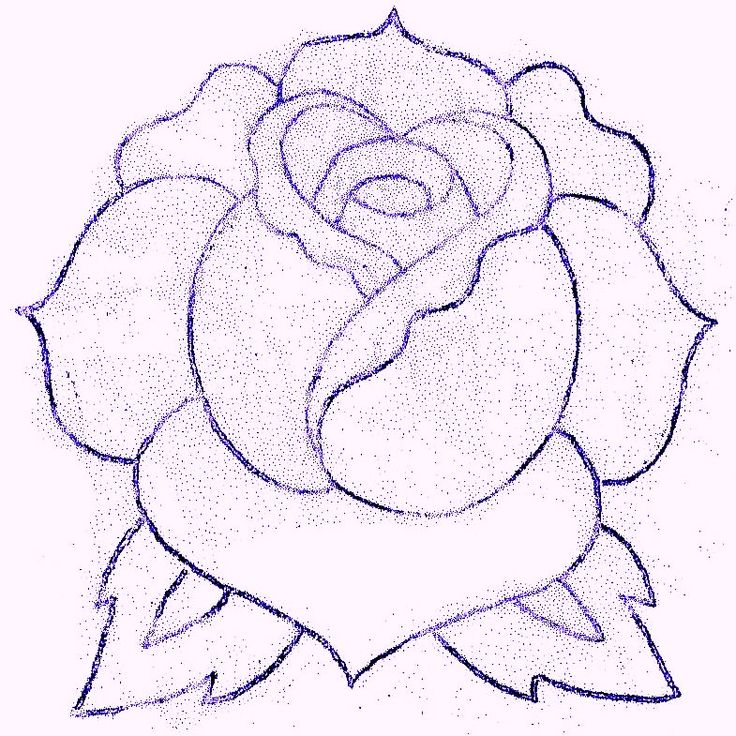 Traditional Rose by TAT-2-U   Traditional rose tattoos, Roses drawing, Flower drawing