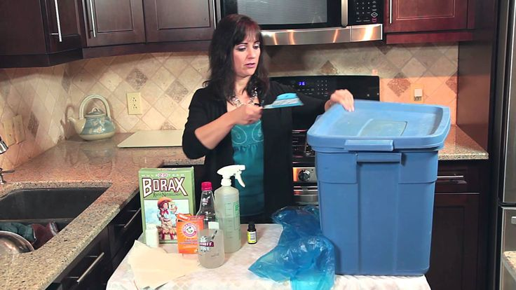 Remove Odor From Clothes Stored In Basement