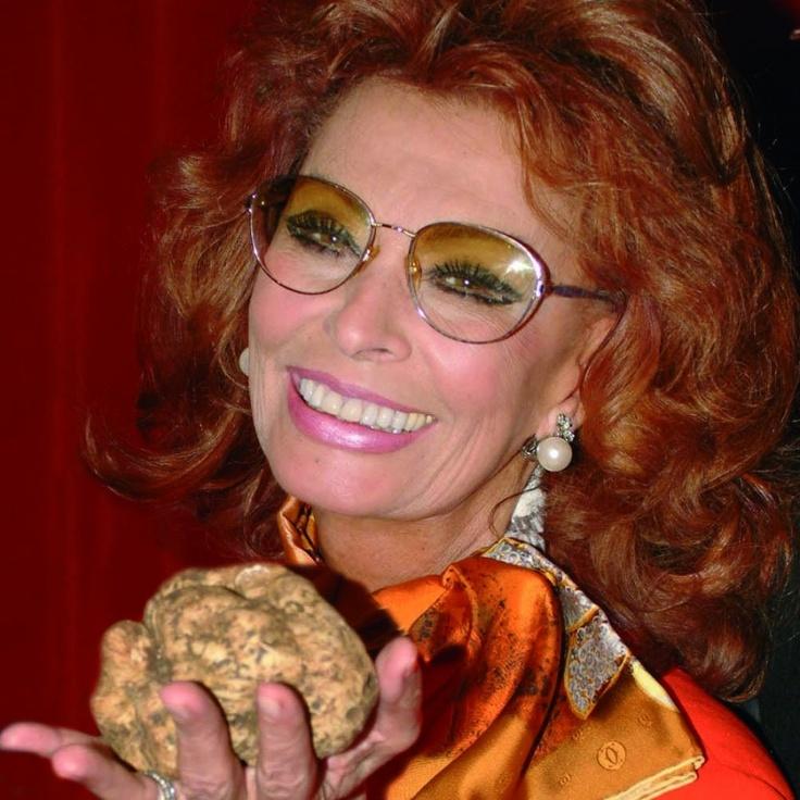 117 Best Images About Sophia Loren On Pinterest