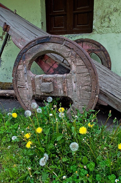 very old wooden farm cart with the most amazing wheels ... Las Herrerias, Galicia, Spain
