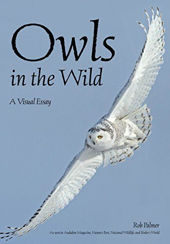 Available 2018! Owls In The Wild: A Visual Tour