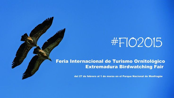 The Extremadura Birdwatching Fair (FIO) will celebrate a very special edition in 2015: their 10th anniversary.