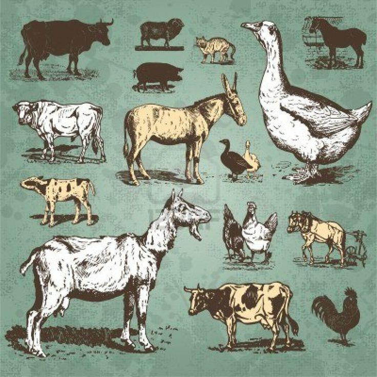 vintage farm animals set