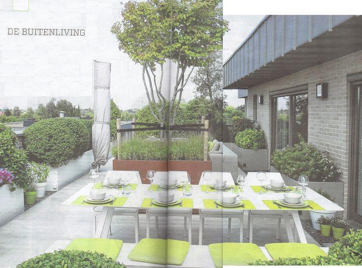 accoya-terrasplanken: hout kleurt niet grijs, werkt niet, mooi glad, zonder splinters en wordt nooit te warm - www.eenzwemvijver.be - ONTWERP MARIO VOLDERS