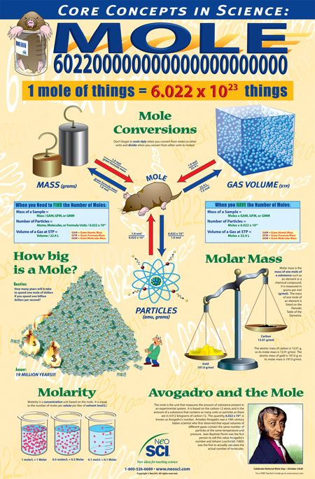 Looking for help for 'The Mole'. Looking online for support and guidance can be a bit of a minefield. It can also be very difficult trying to find that one specific article that can finally make a topic click, and find that set of questions that enable you to finally understand that dreaded topic: 'The Mole'... To continue reading this article visit: http://www.thetutorpages.com/tutor-article/a-level-chemistry/looking-for-help-for-the-mole/3889