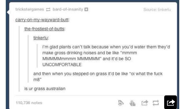 That Aussie grass! It's gotta be canturf!