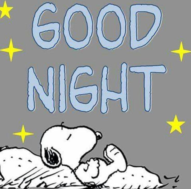 f75b5889b2cfcdff040a531f99bfbdfa--snoopy-peanuts-sleep.jpg (736×728)
