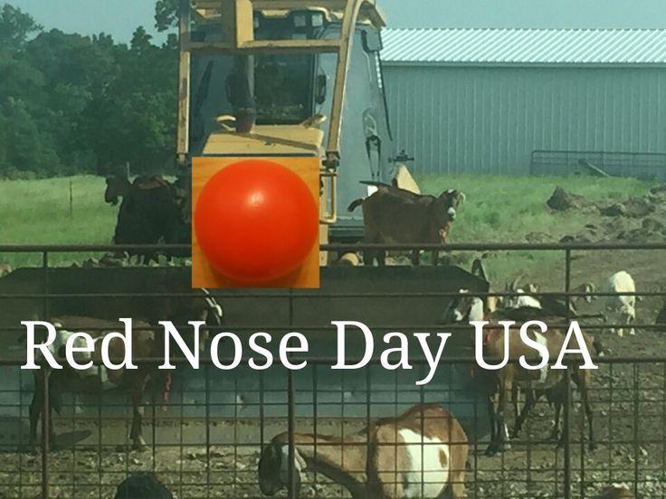 Red Nose Day USA 2016 http://www.brequipmentco.com #heavyequipment #walgreens #heavyequipmentguy #catequipment #rednose #rednoseday #rednoseday2016 #rednosedayusa #rednosedayusaorg #thursdaymay26 #helpthechildren #child