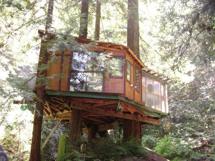 Glamping near Santa Cruz, Corralitos CA | Glamping Monterey Bay Treehouse