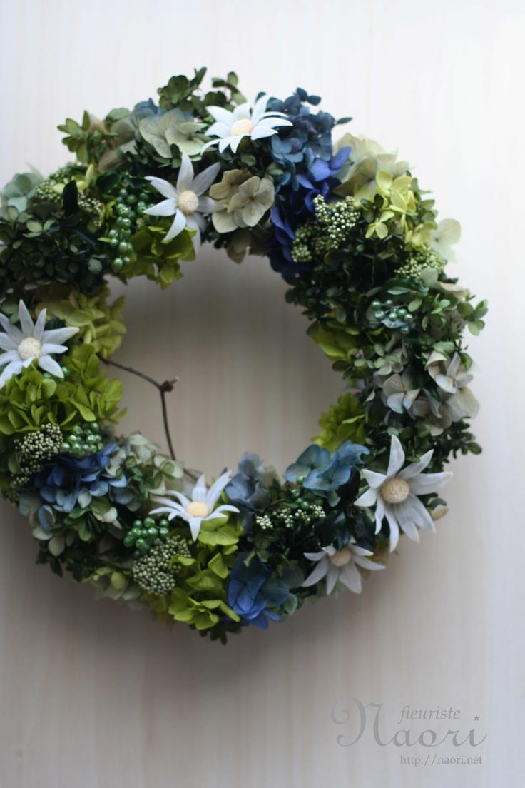 wreath Sydney flannel flower