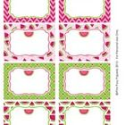 Watermelon Classroom Decor Bin Tag Labels - These sweet labels are great for decorating your classroom in a watermelon theme. Use them as name tags or to label bins, lockers, book baskets and...