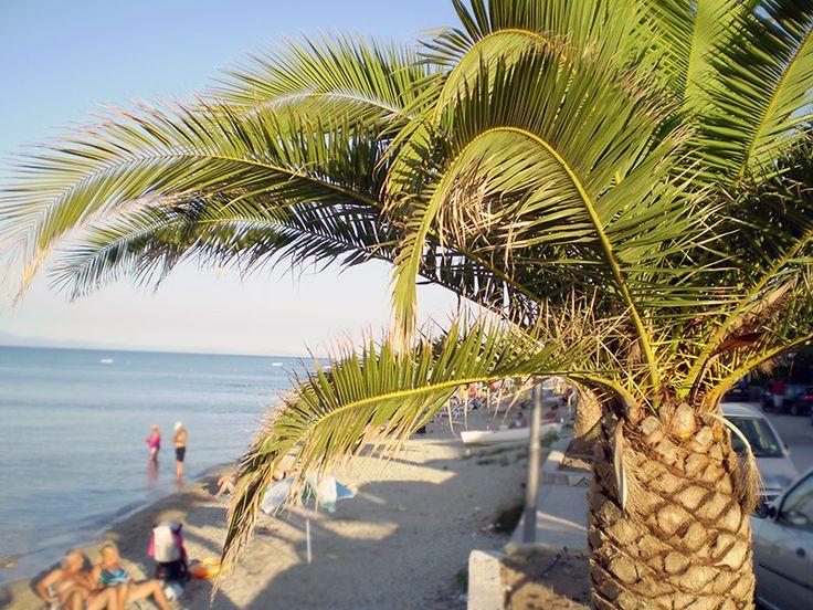 Polichrono beach  #Halkidiki #Greece  http://gohalkidiki.com/