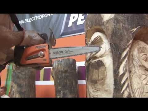 95 best images about chainsaw carving patterns instructions free on pinterest whittling - Sculpture sur bois ...