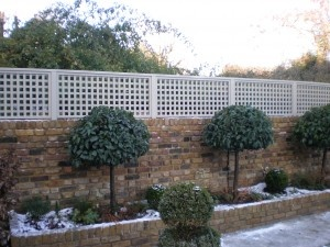 Trellis above brick privacy fence
