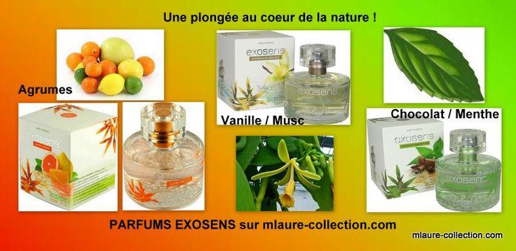 Parfum agrumes, parfum chocolat/menthe, parfum vanille/musc