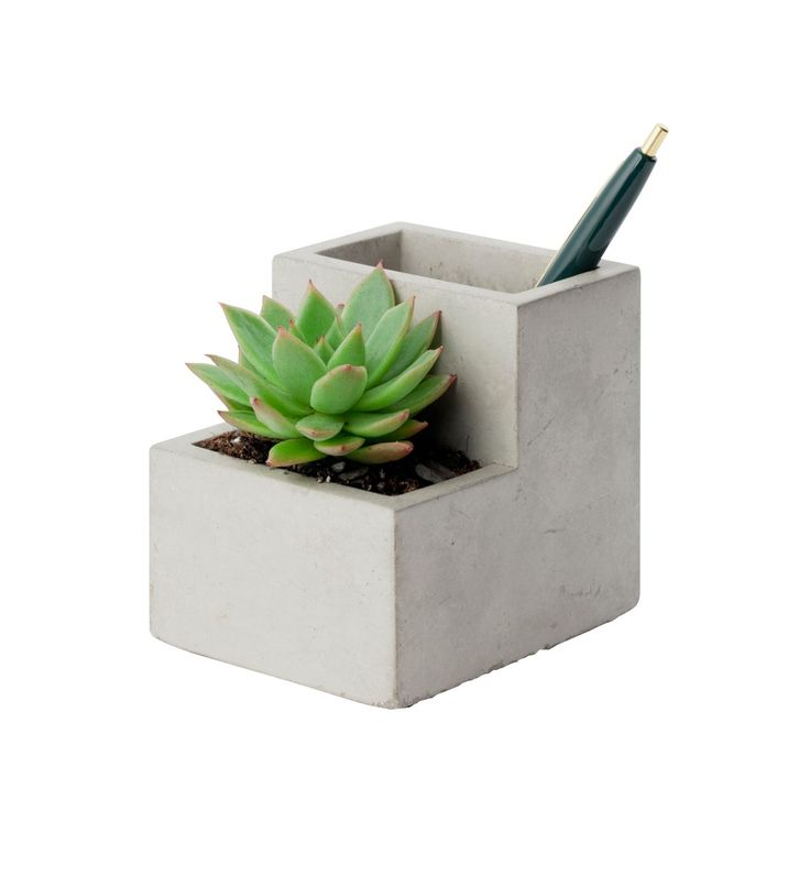 This small concrete planter helps bring life to your desk, nightstand, or wherever you place it! Find this gift and more at swenyo.com