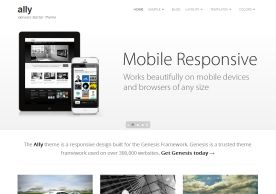 Wordpress theme Mobile Responsive. Smarter Websites fully customises each them to suit your business.