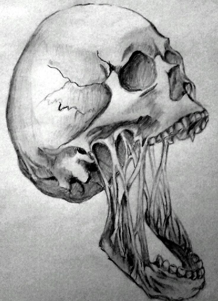 Horror skull by Angeli7.deviantart.com on @deviantART