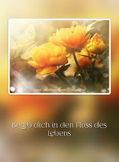 Bettina Myriel Eisinger: ♥ Affirmation ~ Impuls ♥