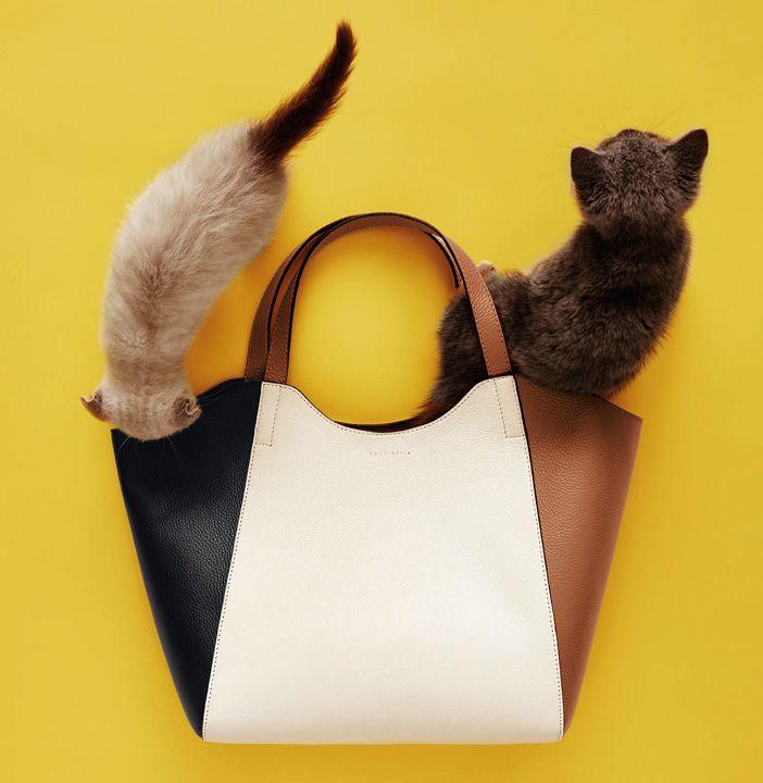 Coccinelle bag cats 2016. сумки модные брендовые, http://bags-lovers.livejournal