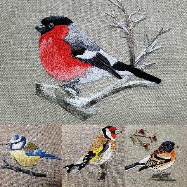FOR SALE 1. Bullfinch 75 EUR - SOLD 2. Blue tit 70 EUR 3. Goldfinch 75 EUR 4. Brambling 85 EUR -SOLD #handembroidery #ricamo #bordado #haftręczny #вышивка #ornithology #birds #ornitologia #ptaki #homedecor #fashion #needlework