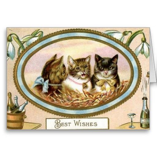 18 best vintage new year cards images on pinterest new year vintage cat new year greeting card m4hsunfo