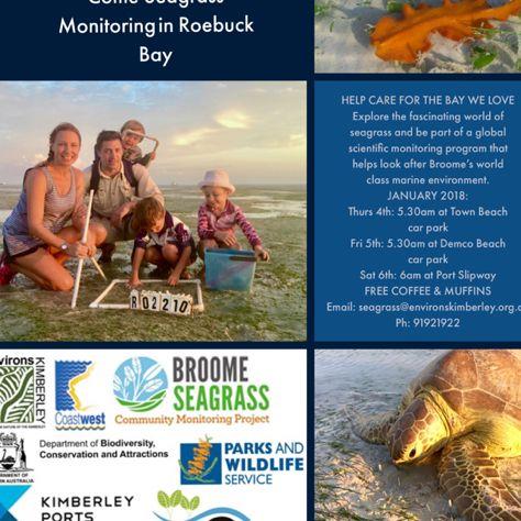 #broome #community #monitoring #seagrass #ecosystem #fish #RoebuckBay #coast #habitat #BenthicInvertebrates #FoodChain #WaterPurifier #CarbonSink #Nature #Crabs #Starfish #SeaSnails #SeaWorms #Zooanthids #Anemones #Environment #LowTide #turtle #dugong #fishing #BroomeSeagrass #ThankSeagrass #LoveBroome #VisitBroome #Volunteers #GoodPeople #CitizenScience #Fun #Science #YawuruCountry #Marine #Beach #Australia
