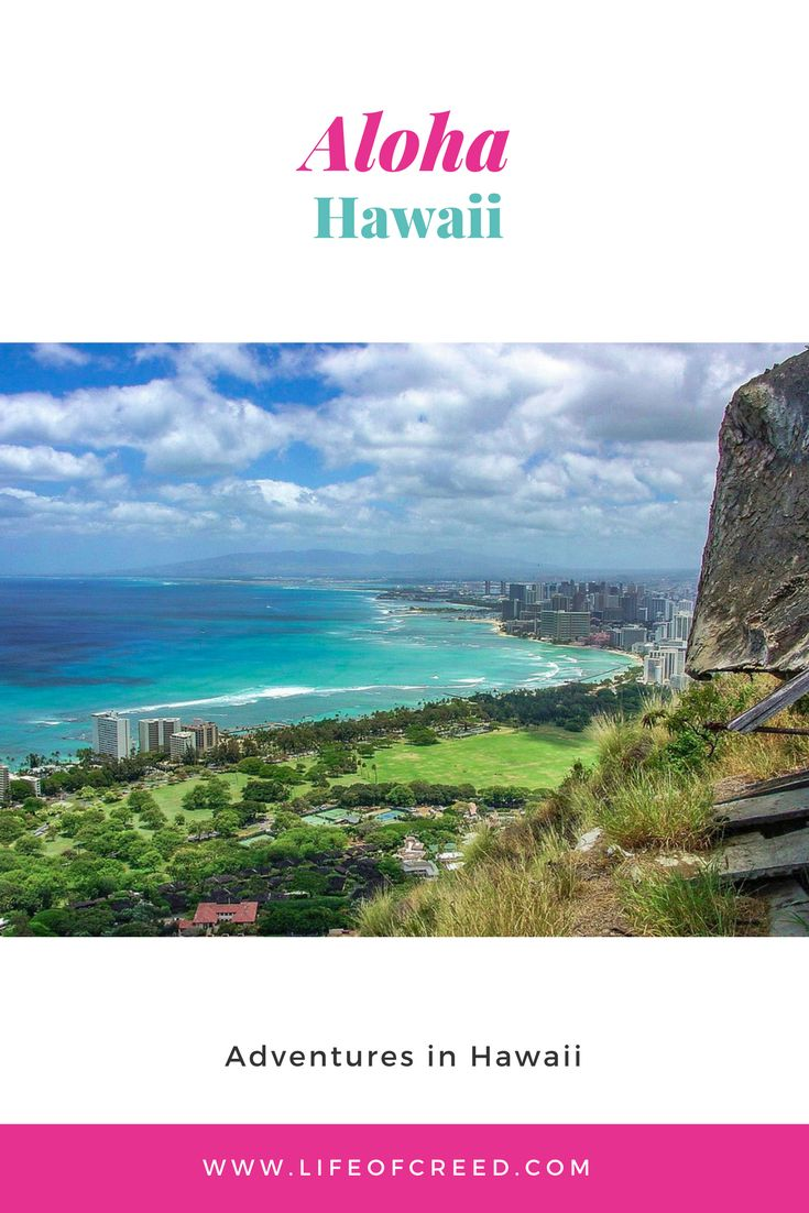Hawaii, the Island of Oahu. The weather was beautiful, the sun warming up the beach, and blue water the view; what more could you ask for to relax on a sunny December's day.