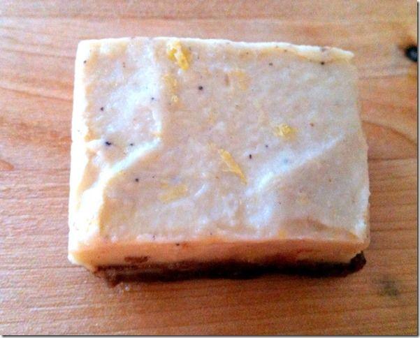 Raw lemon cheesecake with gingersnap crust 3
