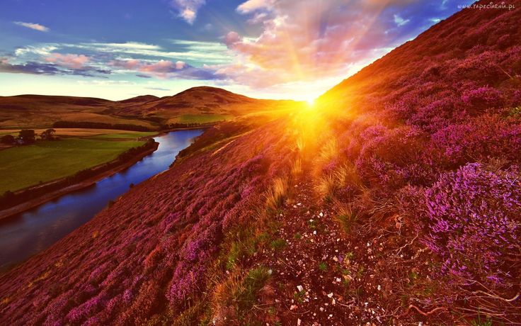 Wschód słońca, Rzeka, Wzgórza, Wrzosy